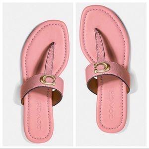 ☀️NEW☀️COACH Jessie T-Strap Sandals